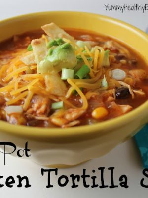 Healthy Chicken Tortilla Soup cooked right in the crock pot for an easy and delicious dinner! Tender chicken, beans and corn in a flavorful broth served with homemade crispy tortilla strips. Yum!