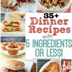Delicious collection of over 35 Easy Dinner Recipes with 5-Ingredients or Less!