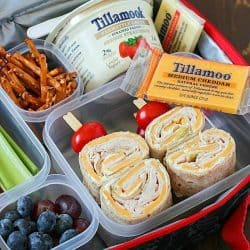Creamy Turkey Pinwheels  – Healthy Lunchbox Idea!