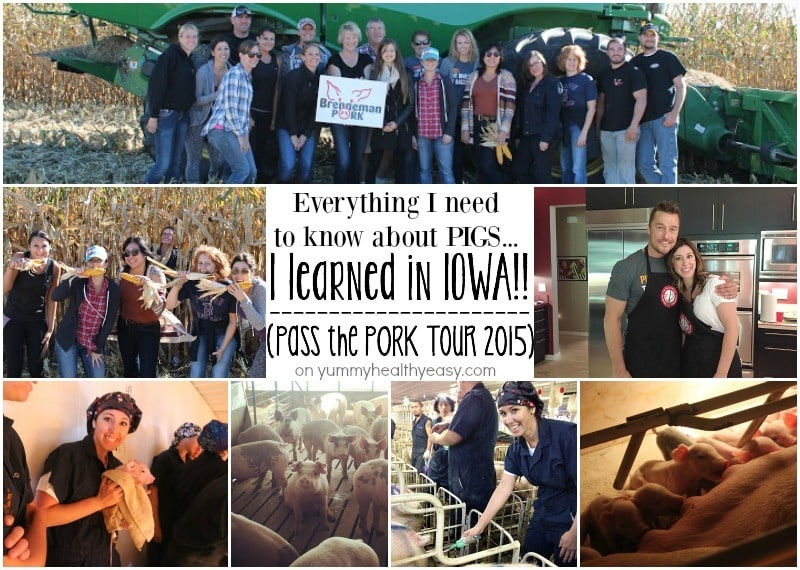 Pass the Pork Tour 2015 on yummyhealthyeasy.com