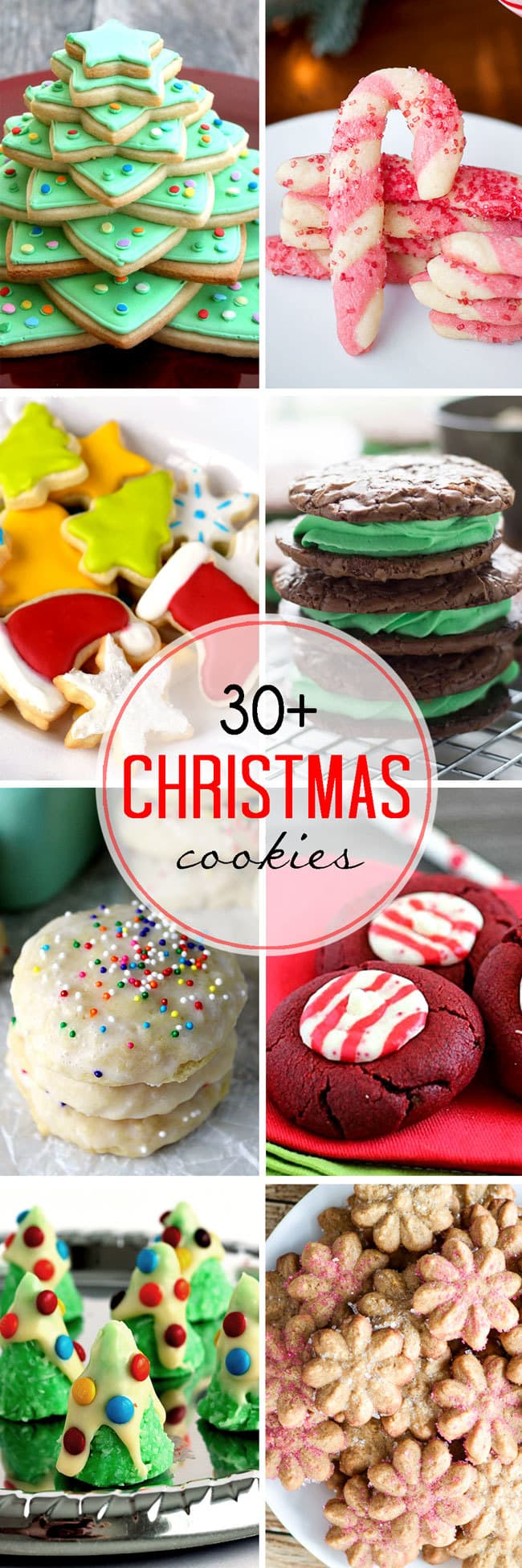 30+ incredible Christmas Cookie Recipes all in one spot! You will definitely find a cookie recipe here that you will love!