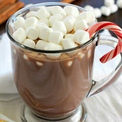 Ever crave a mug of homemade hot chocolate but don't want to make a whole batch? Check out this Hot Chocolate for ONE! Only 4 easy ingredients to a fabulous mug of hot chocolate!