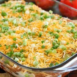 You will love this 7 Layer Bean Dip! This is my Mom's quick & easy recipe for the most requested, most popular appetizer in our family. It's perfect to bring to a party or to serve during game day!
