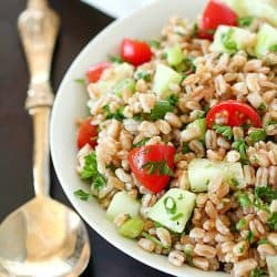 Farro Salad full of tender farro, tomatoes, cucumber, green onions, parsley, and tossed in an olive oil & lemon dressing. Super easy and delicious side dish! With a delicious mix of flavors and textures - I will be making this farro salad again and again and again. :)