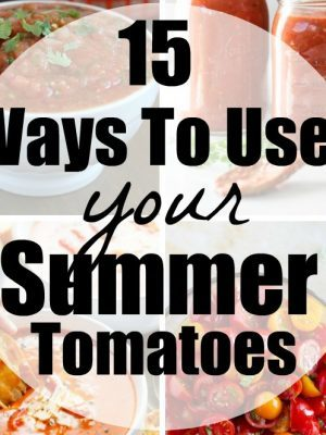 15 tomato recipes to use those summer tomatoes!! Scrumptious ways that you can enjoy your garden fresh tomatoes all summer long!
