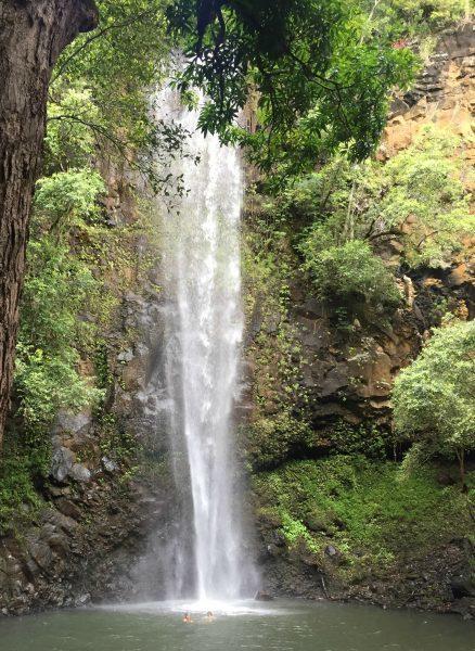 Rainbow Kayak Tours down the Wailua River & hiking to Secret Falls Waterfall! (the Ultimate Kauai Travel Guide - What to do in Kauai) AD