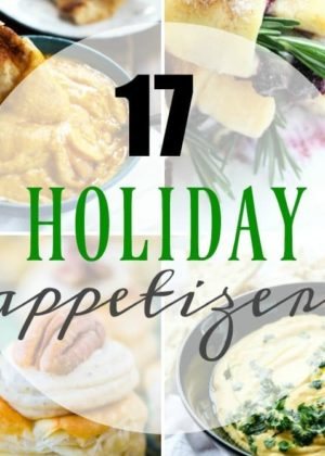 17 Holiday Appetizers to get you ready for your fun Holiday parties! These simple yet delicious holiday appetizers are exactly what you need for your upcoming get togethers. Whether you're hosting or attending a potluck, I've got you covered! :)